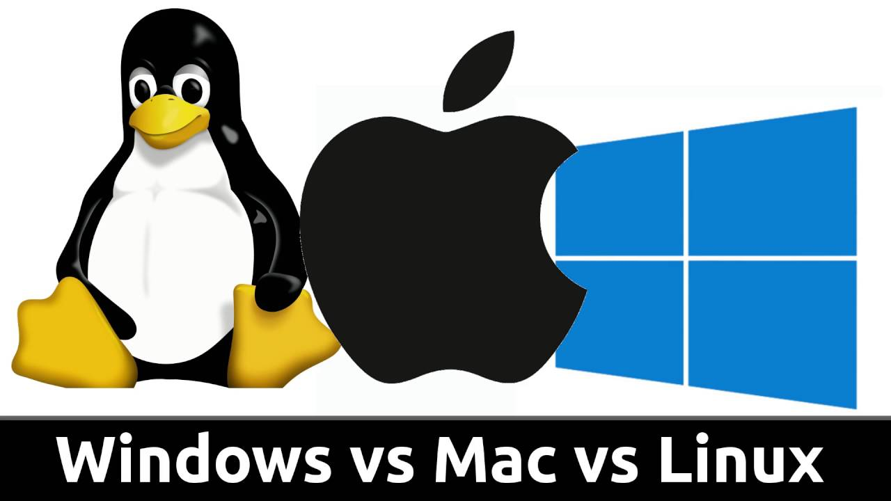 Which operating system do you use?