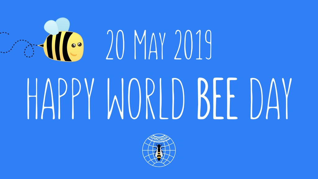 Happy World Bee Day, 2019!